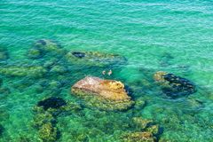 Rocky coast in summer in Sicily, Italy. Rocky coast with people diving in summer in Castellammare del Golfo in Sicily, Italy Stock Photo
