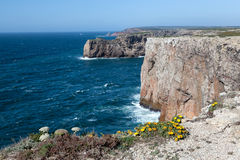 Rocky Coast of Portugal Royalty Free Stock Photography