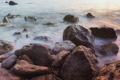Rocky coast with seaweed,close up Royalty Free Stock Photography