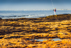 Rocky Coast and See with Fisherman Royalty Free Stock Photo