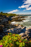 Rocky coast seen at Fort Williams Park, in Cape Elizabeth, Maine Royalty Free Stock Photography