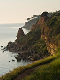 Rocky coast at sunrise. Rocky coast with interesting trees at sunrise, Greece Royalty Free Stock Images