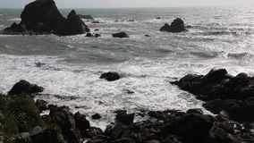 Rocky coast of Tasman Sea stock video