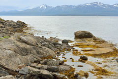 Rocky coast in Tromso, Norway. Northern landscape Royalty Free Stock Photos