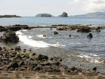 Rocky coast on Pico island, The Azores Stock Photo