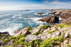 Rocky coastline Royalty Free Stock Photo