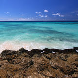 Rocky coastline of Barbados Stock Photo
