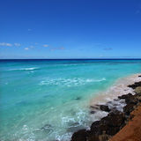 Rocky coastline of Barbados Stock Photography