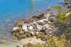 Rocky coastline beach with an old stone wall, bushes and trees o Stock Photos