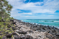 Rocky coastline at Burleigh Heads Stock Image