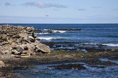 Rocky coastline Stock Photo
