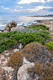 Rocky coastline in Cyprus Stock Images