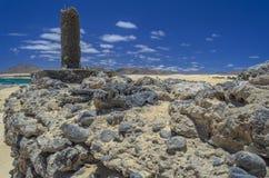 Rocky Coastline em Fuerteventura, Ilhas Canárias imagens de stock