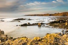 Rocky coastline at Howick Royalty Free Stock Photo