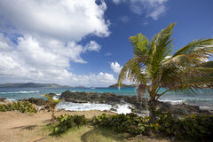 Rocky coastline of an island in the Caribbean Stock Images