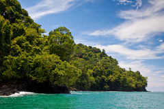 Rocky coastline and jungle near the sea Stock Images