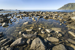 Rocky coastline on Lofoten Islands, Norway Royalty Free Stock Images