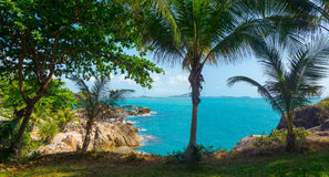 Rocky coastline on Samui Island Stock Photo