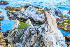 The rocky coastline. Stock Photos