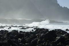 Rocky Costadel Buenavista strand, Tenerife, kanariefågel, Spanien Arkivfoto