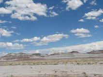 Rocky Crag i målad öken Arkivbilder