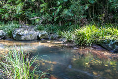 Rocky Creek. A beautiful australian creek with a rocky bottom, crystal clear water and trees on either side Stock Image