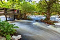Rocky creek with cascades in Sweden. Rocky creek with cascades in southern Sweden Royalty Free Stock Photos