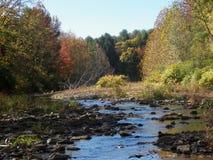 Rocky Creek VIII Stock Photo