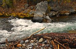 Rocky Creekside. Whitewater scene in the spring along Whychus Creek - Cascade Range - near Sisters, OR royalty free stock photo