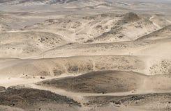Rocky Desert på den Skelleton kusten (Namibia) Royaltyfri Foto