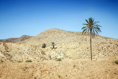 Rocky desert in southern Tunisia Royalty Free Stock Image