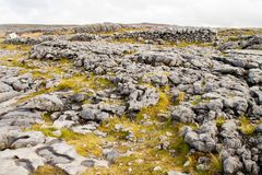 The Burren in autumn Royalty Free Stock Photography