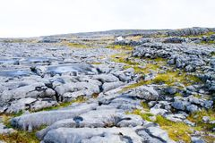 The Burren in autumn Royalty Free Stock Image