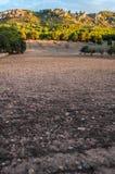 Rocky earth Stock Photography