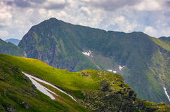 Rocky edge on grassy hillside with snow. Majestic carpathian summer landscape in romania mountains Royalty Free Stock Image