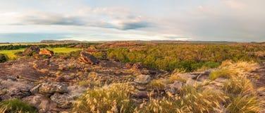 Rocky Escarpment en gouden grassen - Kakadu-panorama stock foto