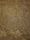 Rocky Farm Field Texture Dirt oscila el suelo de Brown del fondo Imagen de archivo libre de regalías