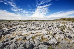 Rocky field in County Clare. Ireland Stock Photo