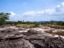 Rocky field landscape with maedow and mountain Royalty Free Stock Images