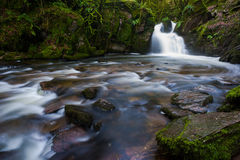 Rocky forest waterfall stream Royalty Free Stock Image