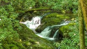 Rocky Fork-Nebenfluss lizenzfreie stockfotos