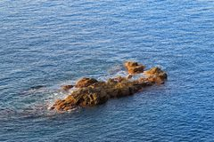 Rocky formation in a blue water at sunrise. Praia Formosa beach in Funchal on the island Madeira, Portugal royalty free stock image