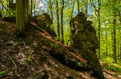 Rocky formation among the green forest. Mysterious place looks like stone idol. lovely place in wild woods Royalty Free Stock Image
