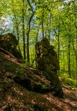 Rocky formation among the green forest. Mysterious place looks like stone idol. lovely place in wild woods Stock Images