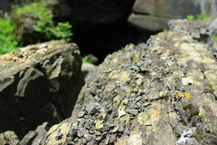 Rocky gorge Royalty Free Stock Images