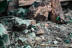 A rocky ground surface characterized by gravels and small rocks royalty free stock photography