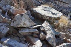 Rocky habitat Stock Image