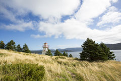 Rocky Harbour Lighthouse Royaltyfria Foton