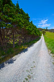 Rocky hiking trail - New Zealand Stock Images