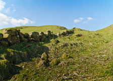 Rocky Hill Stock Photography